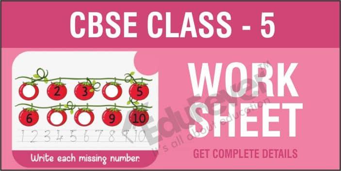 CBSE Class 5 Worksheets