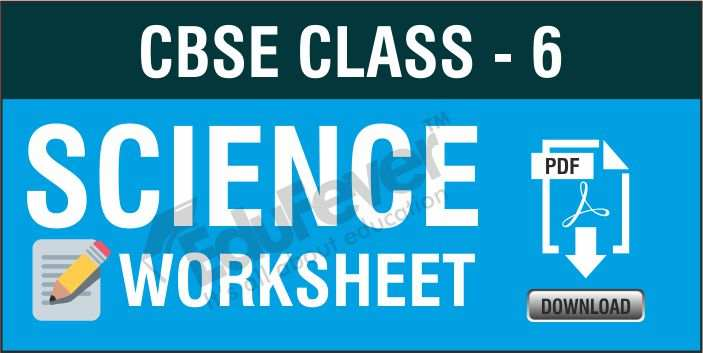 Class 6 Science Worksheets