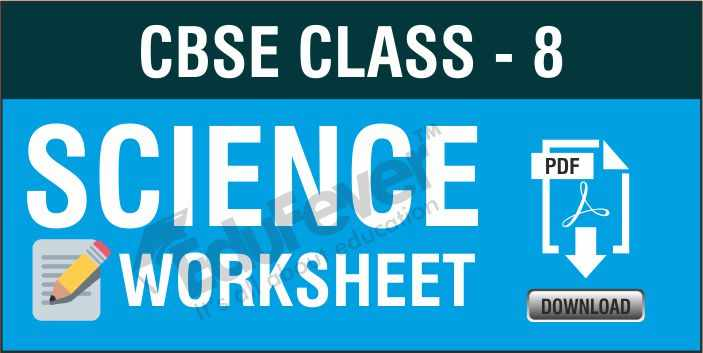 Class 8 Science Worksheets