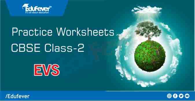 CBSE Class 2 EVS Practice Worksheet
