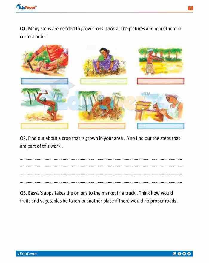 Class 4 EVS Worksheet