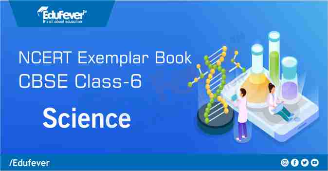 CBSE Class 6 Science Exemplar Book and Solutions