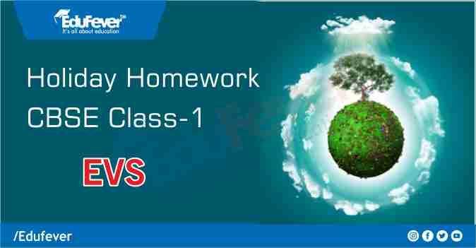 CBSE Class 1 EVS Holiday Homework
