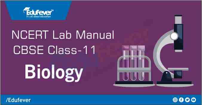 CBSE Class 11 Biology Lab Manual