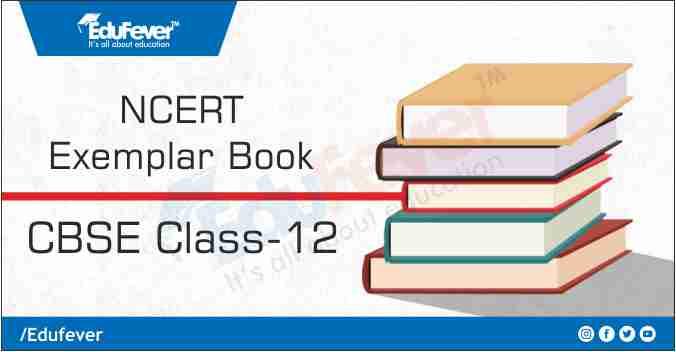 CBSE Class 12 NCERT Exemplar Book