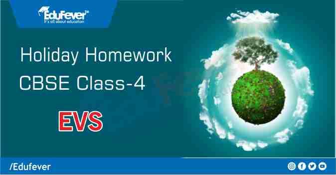 CBSE Class 4 EVS Holiday Homework