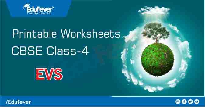 CBSE Class 4 EVS Printable Worksheet