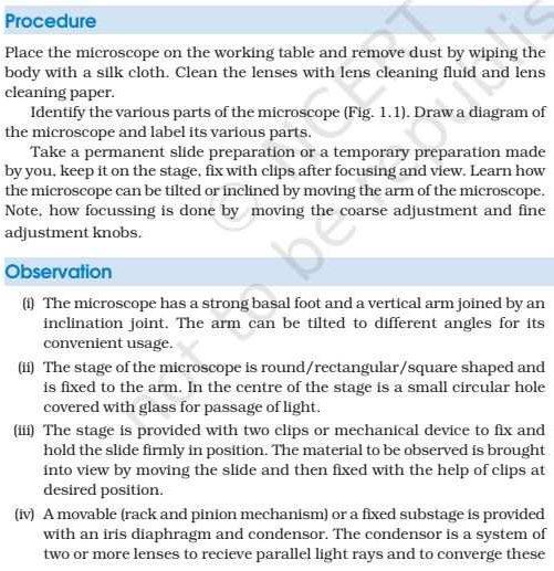 Class 11 Biology Lab Manual
