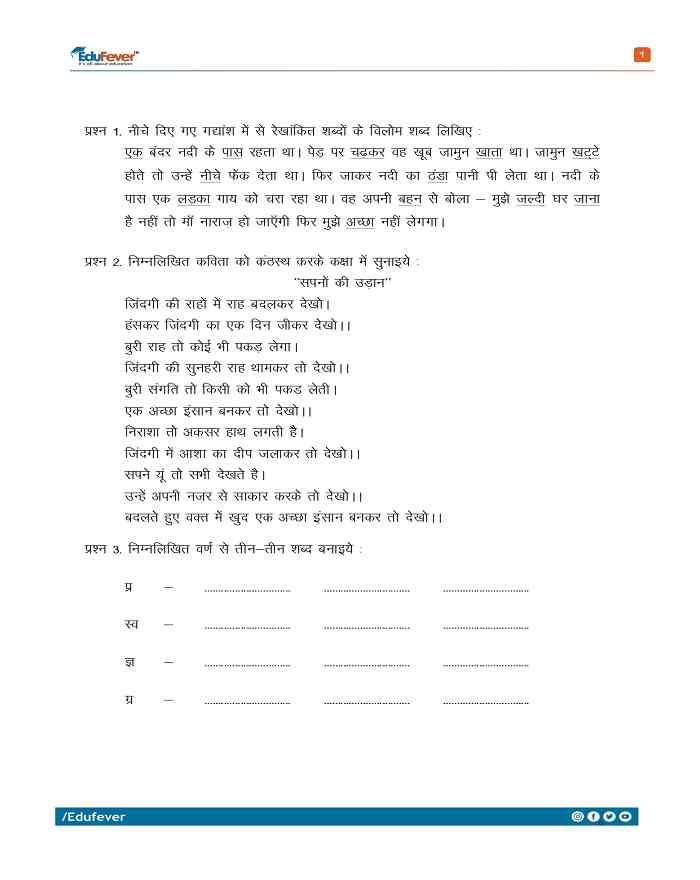 Class 3 Hindi Class Test
