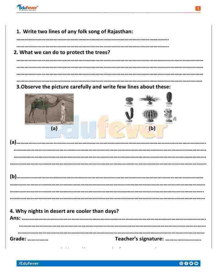 Class 4 EVS Holiday Homework
