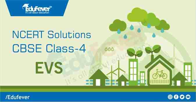 Class 4 EVS NCERT Solution