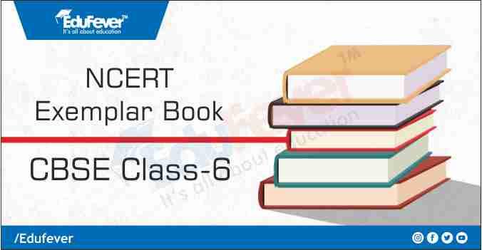 Class 6 Exemplar Book