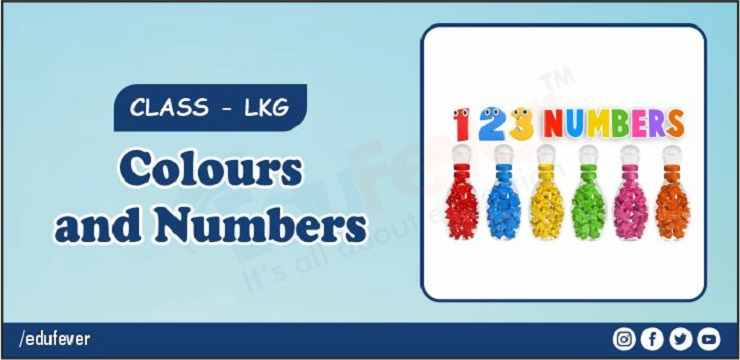 color and numbers