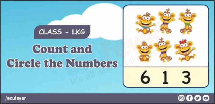 count and circle the number