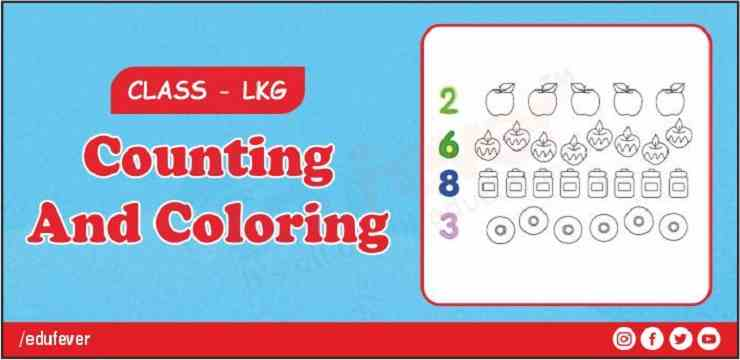 counting and coloring