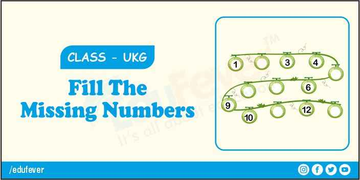 fill the missing number